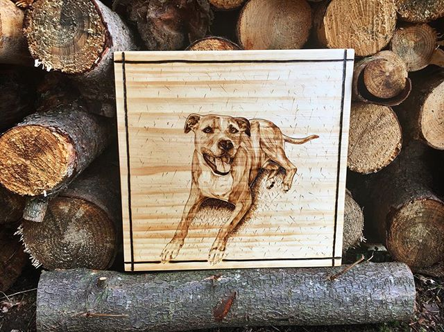 Passing this fun pet portrait off to a friend today 😍 ▫️ ▫️ ▫️ #petportrait #portrait #customportrat #customwork #pyrography #pyrographyportrait #woodburning #woodburningart #woodburned #woodenart #pnwartist #pnwart #seattleartist