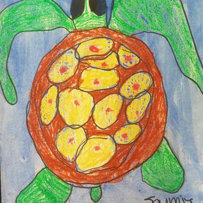 Sea Turtle, Journie Merriss, Grade: Kindergarten, Murray Elementery, Teacher Stoya Hastings