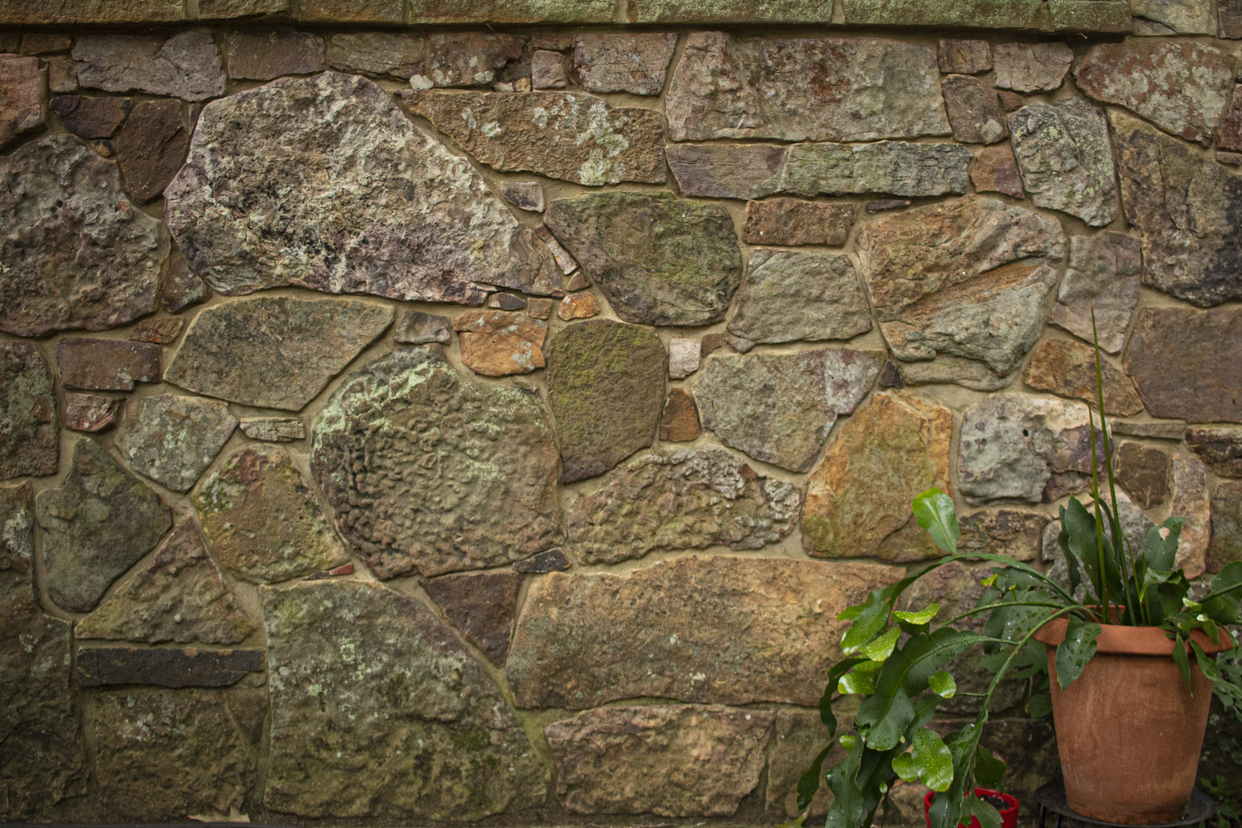 carport wall.jpg