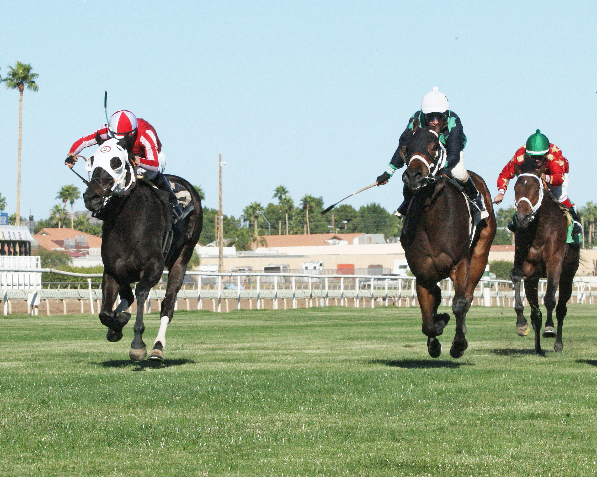 Twelve Tribes - Jeff & Jack Coady, Sr Stakes - 11-08-14 - R05 - TUP - Under Rail Finish (1).jpg