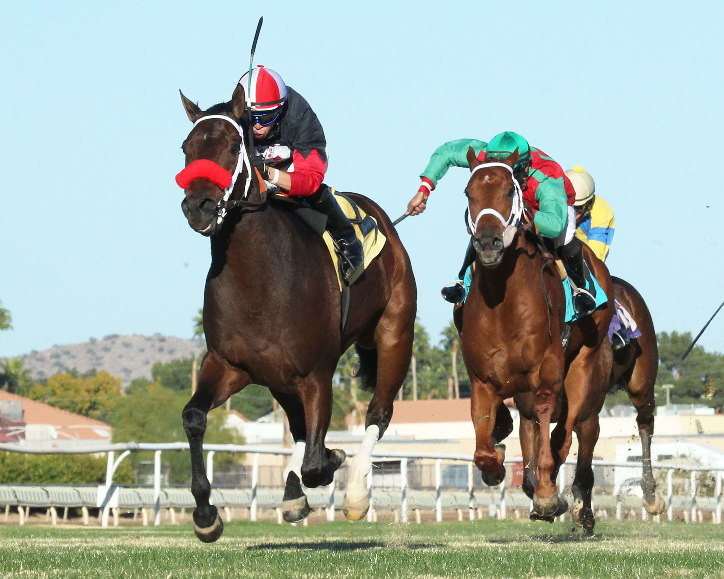 Storm Power - Walter R Cluer Memorial Stakes - 11-29-14 - R07 - TUP - Under Rail Finish (1).jpg