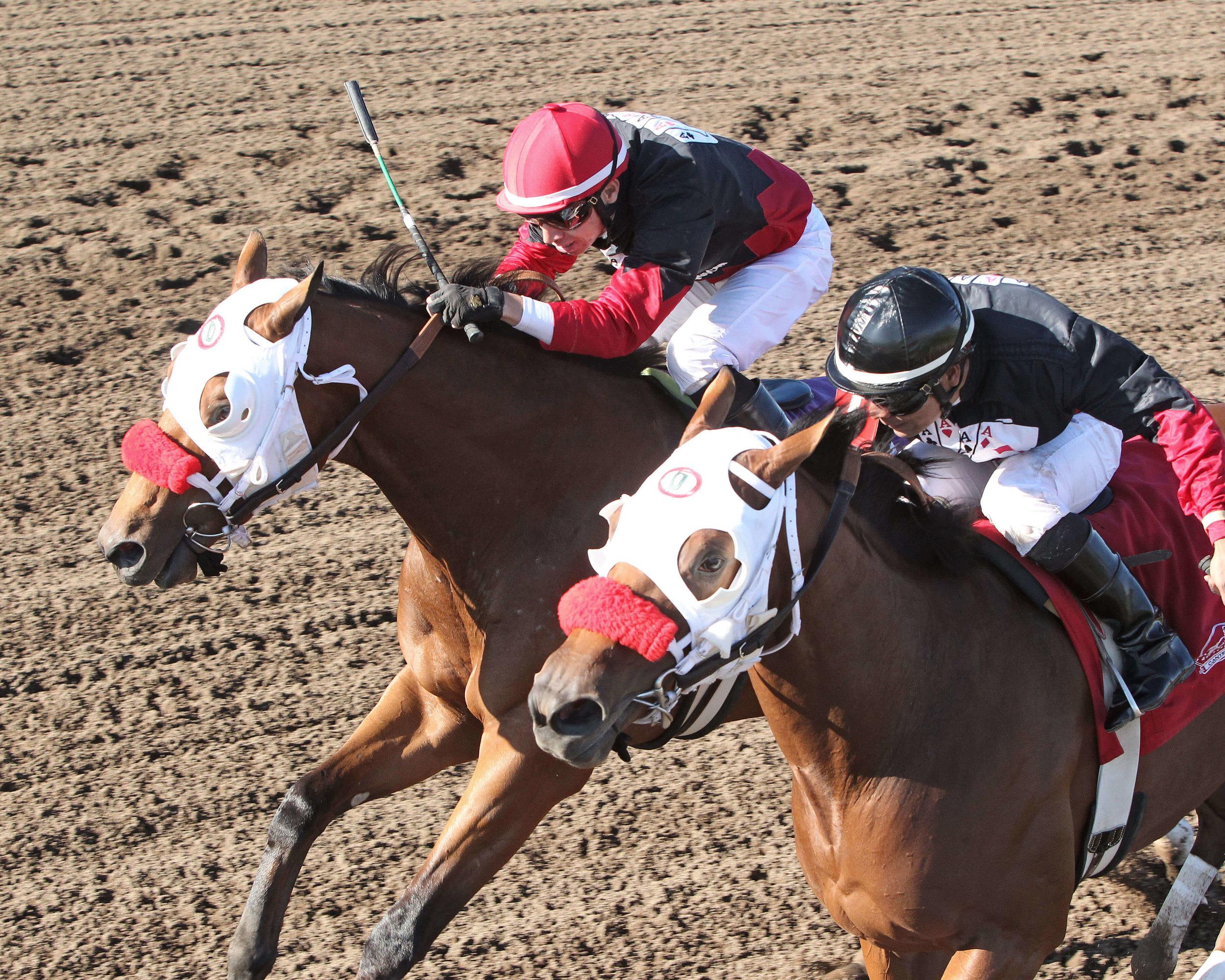 Native American & Grand Full Moon (DH) - Shakopee Juvenile Stakes - 09-13-14 - R09 - CBY - Inside Finish (1).jpg