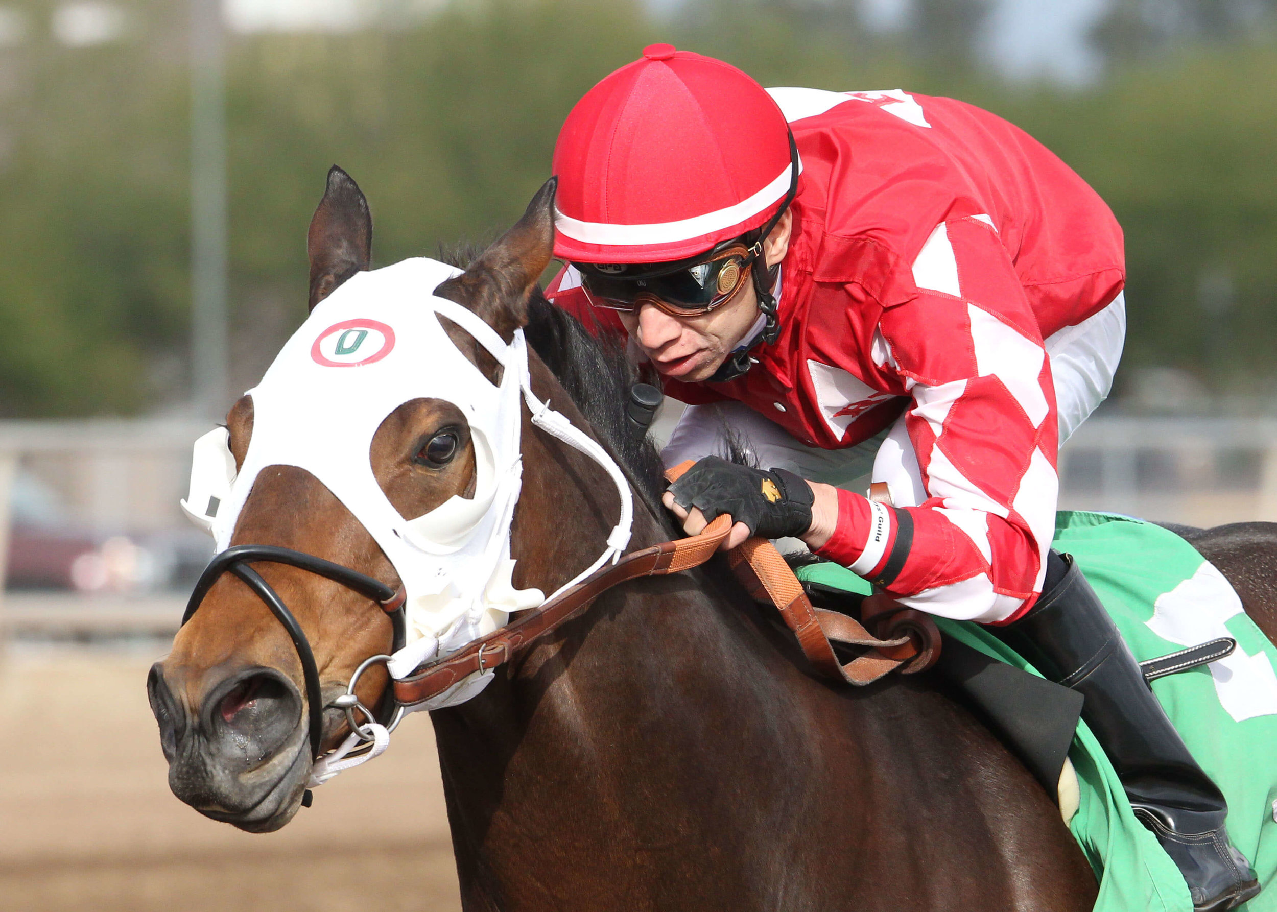 LA Weekend - Caballos Del Sol Stakes - 12-07-13 - R04 - TUP - Inside Finish (1) (1).jpg