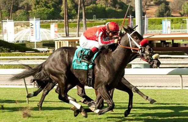 Photo courtesy of Horse Racing Nation | Benoit Photo