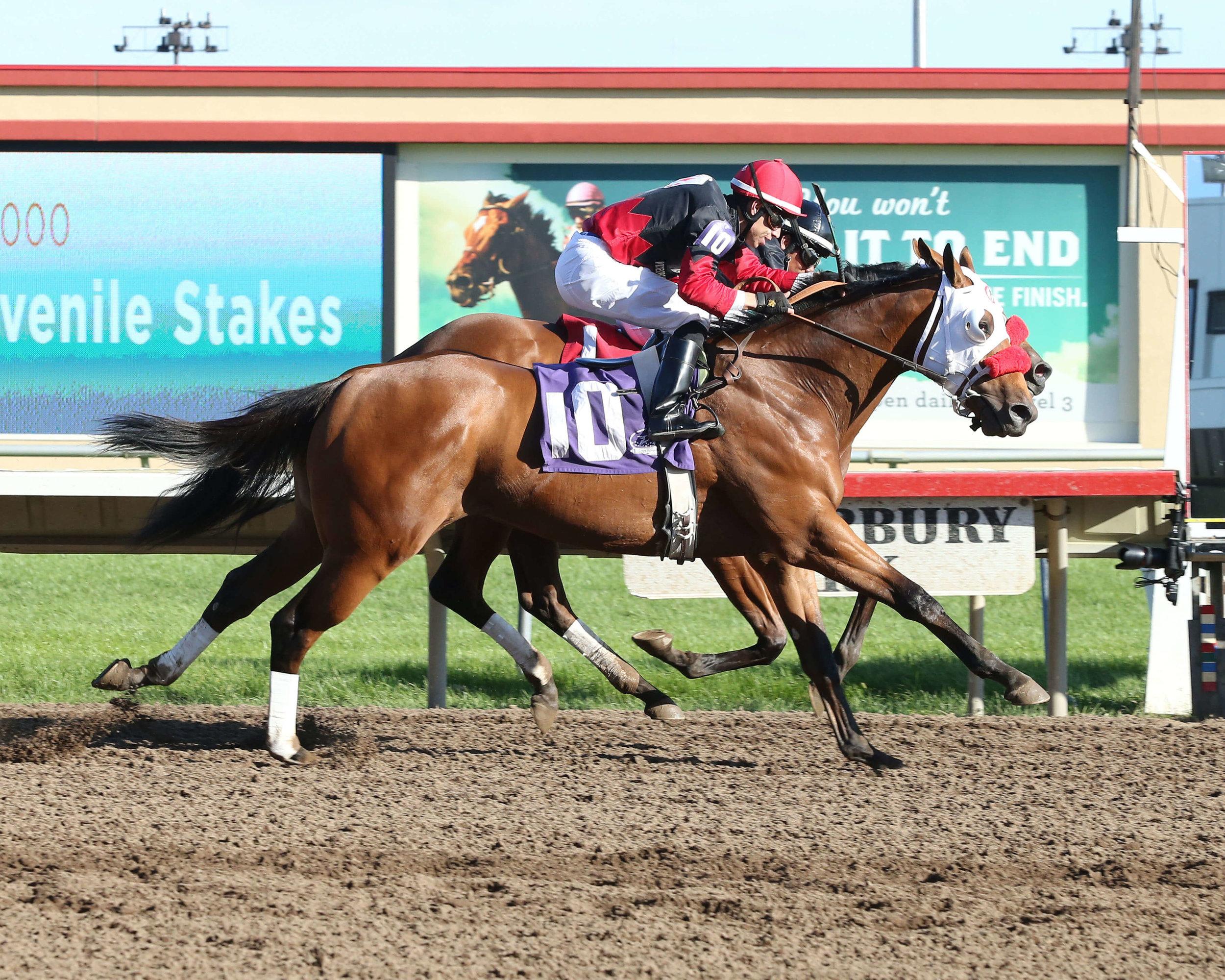Native American & Grand Full Moon (DH) - Shakopee Juvenile Stakes - 09-13-14 - R09 - CBY - Finish (1).jpg