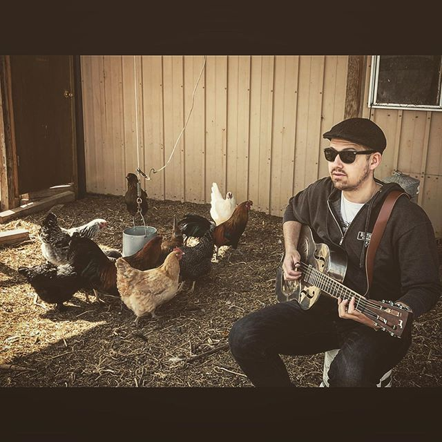 Fixing to get down with the band TONIGHT 9pm at the @swingstationlaporteco #getdowntonight #chickens #chickensofinstagram #chickengram #livemusic #fortcollins #fortcollinscolorado #noco #foco #woah #muleresonator #mule #thenewsoundofsteel #barnyard #roots #blues #rock #juke #saturdaynight #ohman #delaneyguitars #fuchsamps #curtmangan #yadig