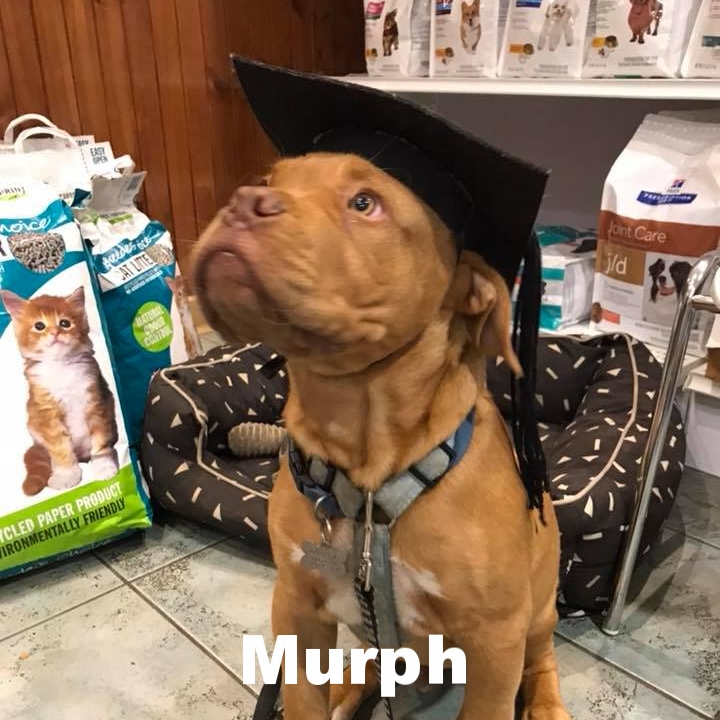 PPS - Murph.jpg