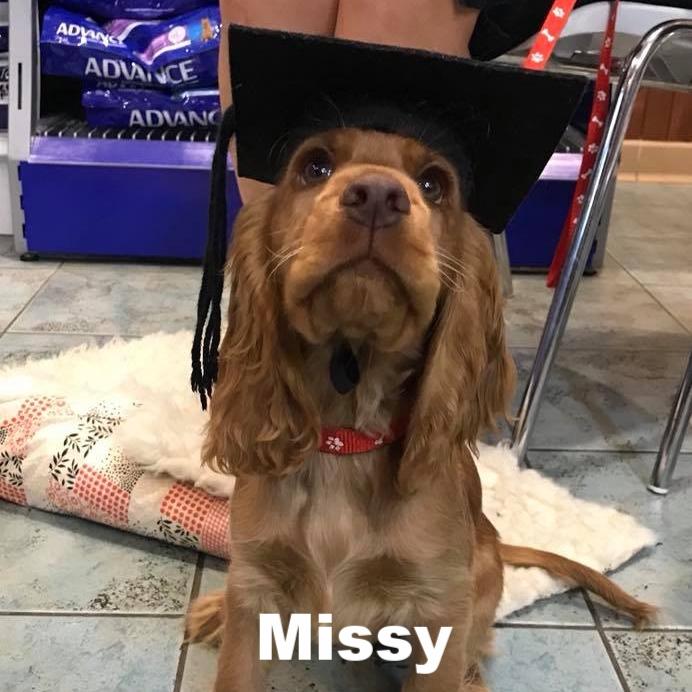 PPS - Missy.jpg
