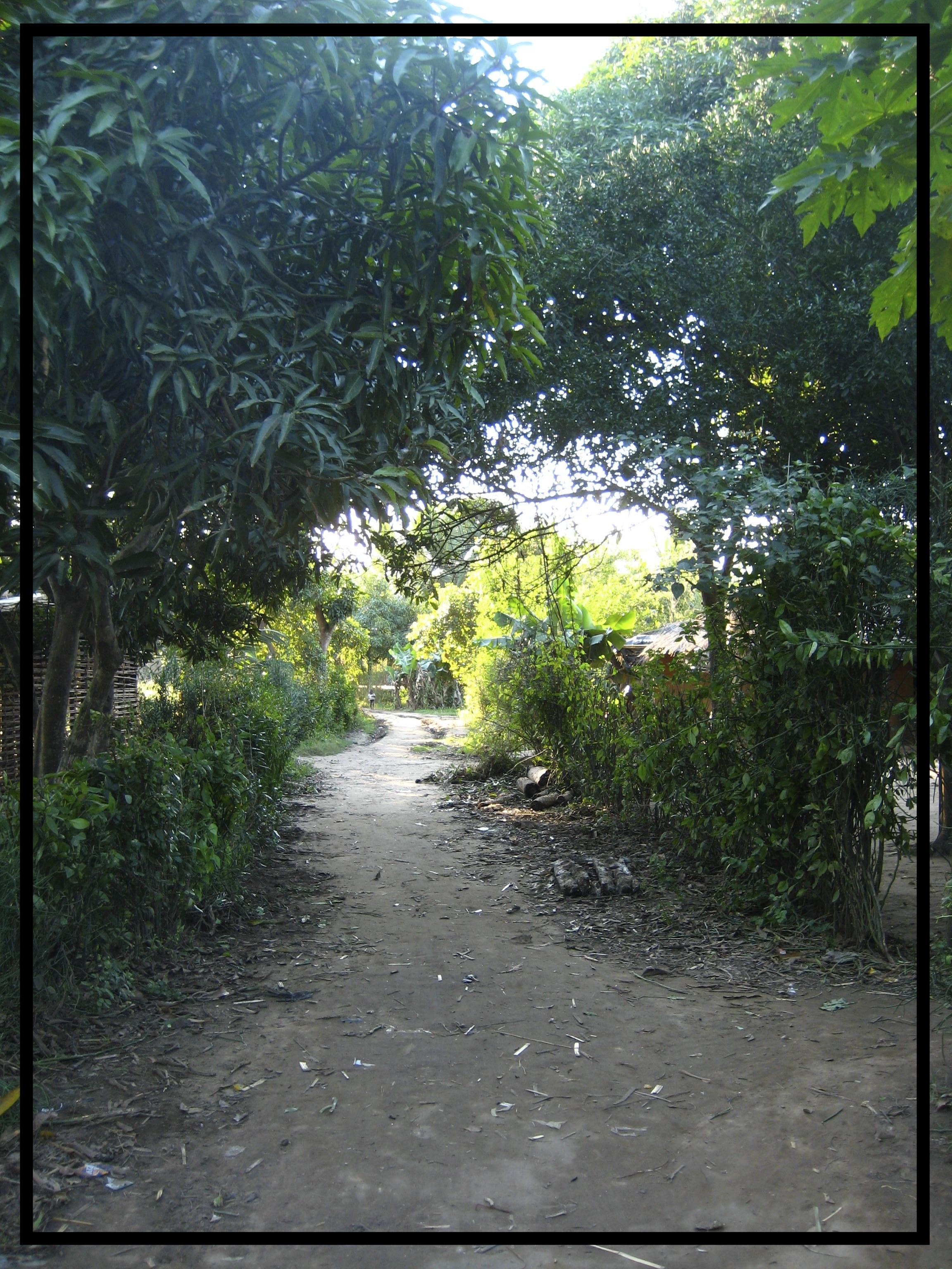 Copy of Marromeu