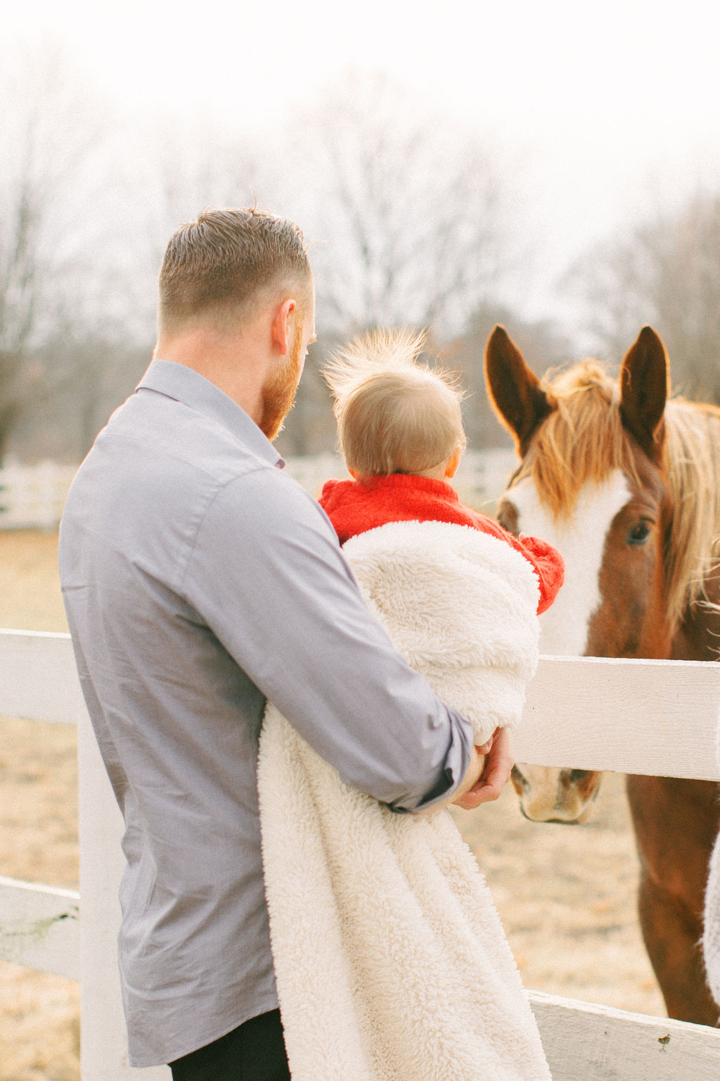 Baby and horse