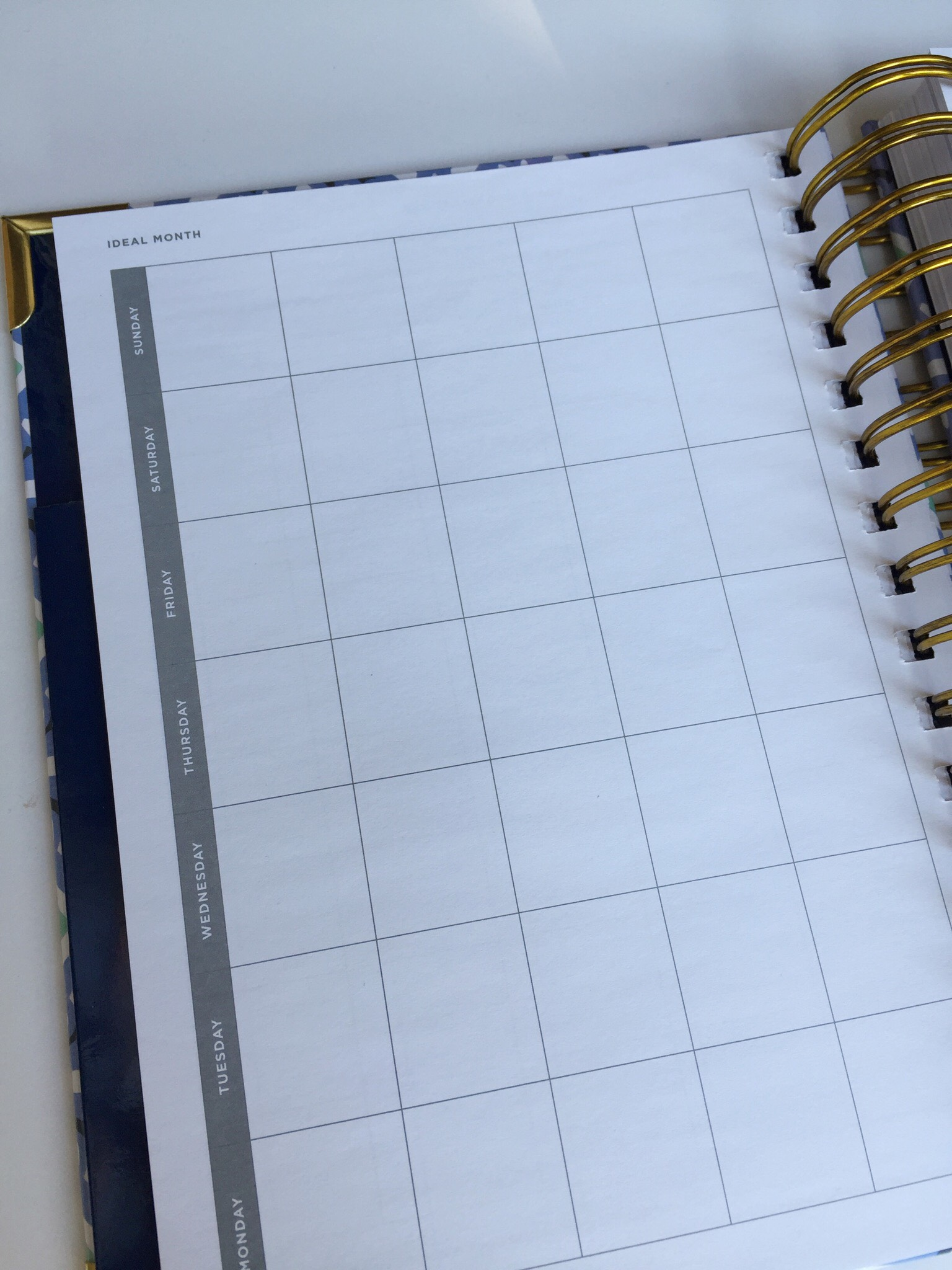 Day Designer Mini Ideal Month