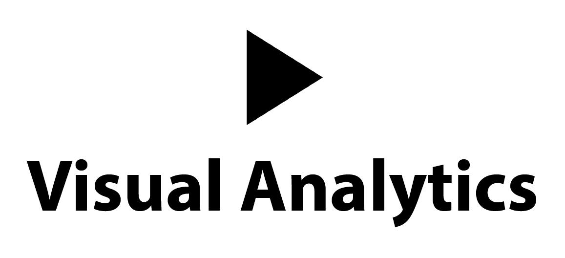 Visual Analytics logo