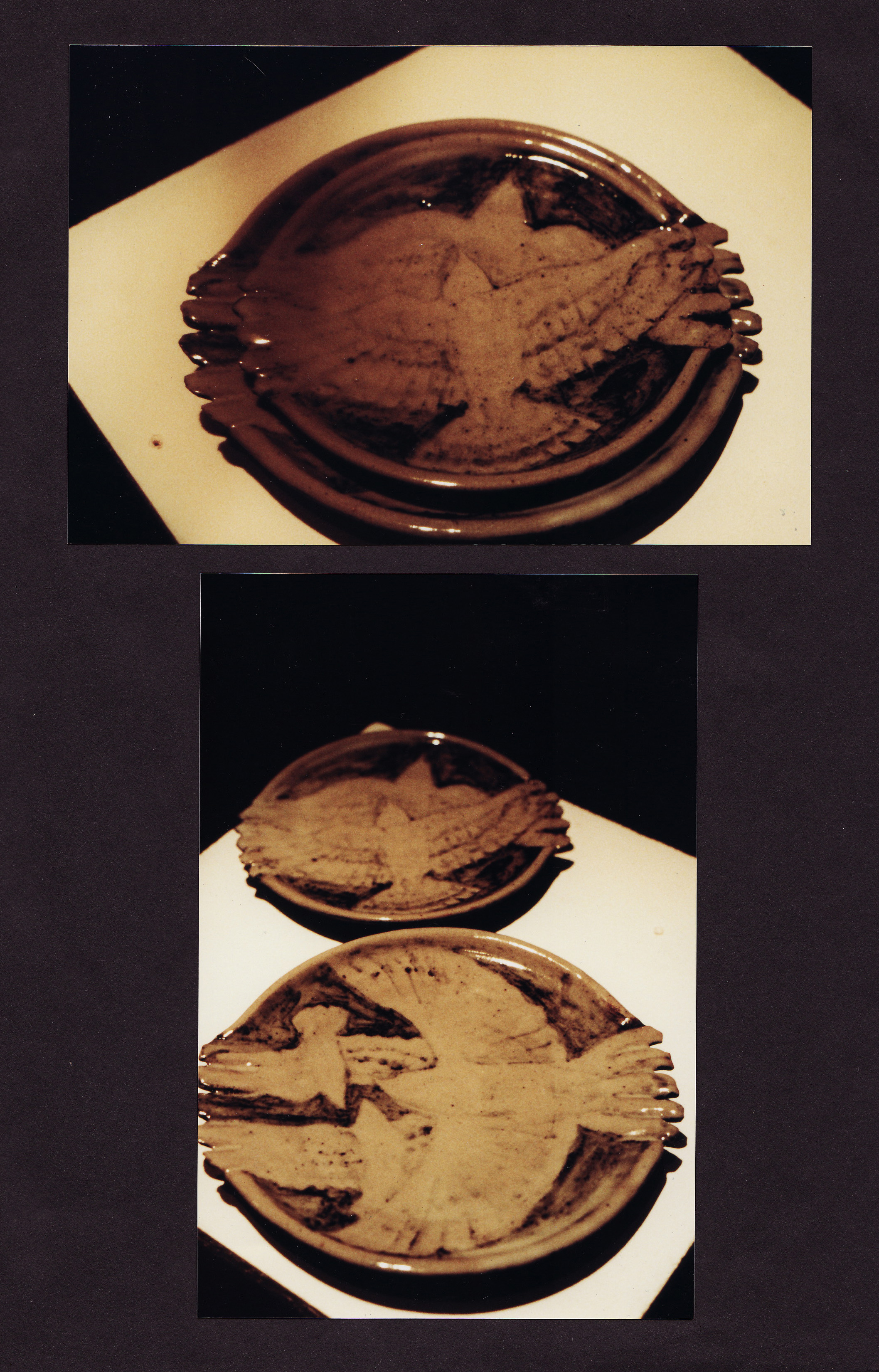 Hawk plates.jpg