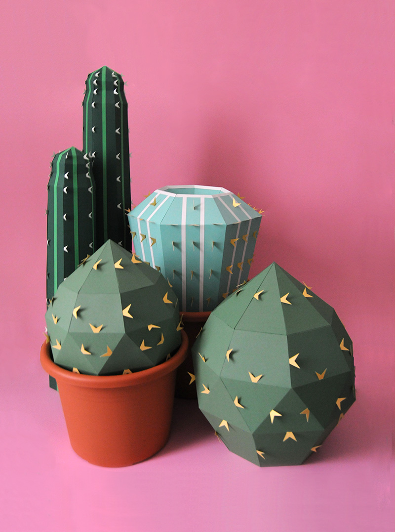 Cacti_02.jpg
