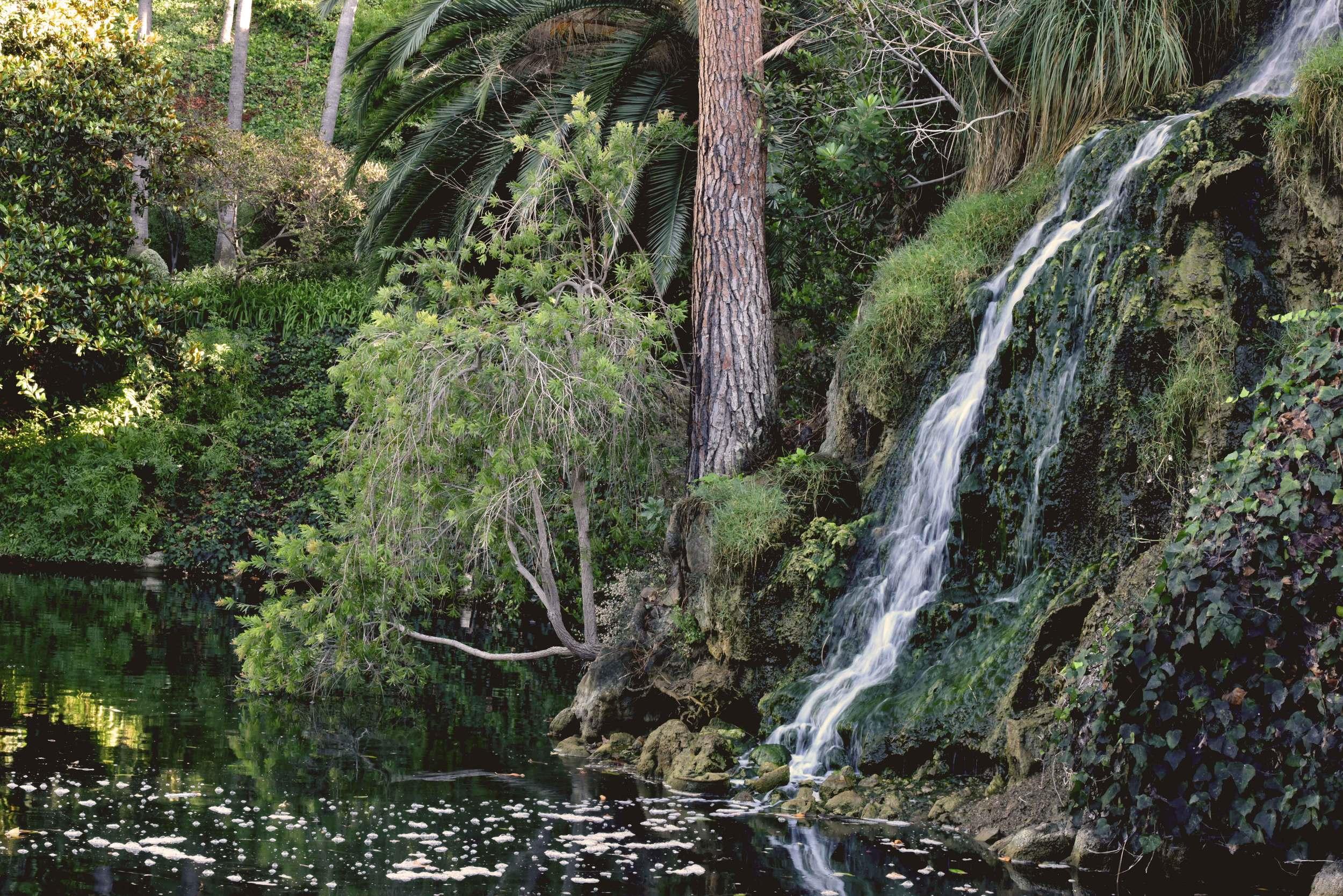 SRF Lake Shrine gardens, Pacific Palisades, CA. Image©thingstodot.com