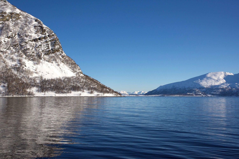 Lyngen fjords, Norway.Image©thingstodot.com