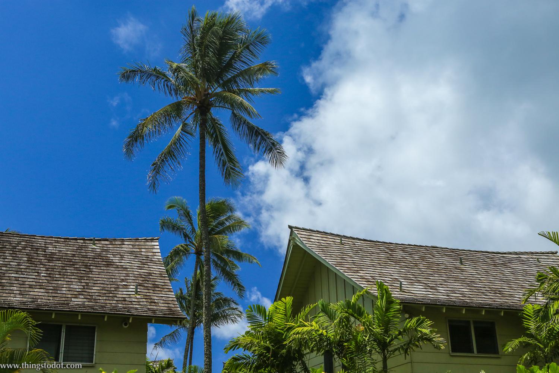 Condos on Wailua Beach,Kauai, Hawaii. Photo: Jonathan Moeller (www.jmoellerphoto.com).Image©www.thingstodot.com