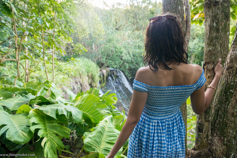 Wailua Falls hike, Kauai, Hawaii. Photo: www.pk-worldwide.com (Patrick Kelley), Image©www.thingstodot.com