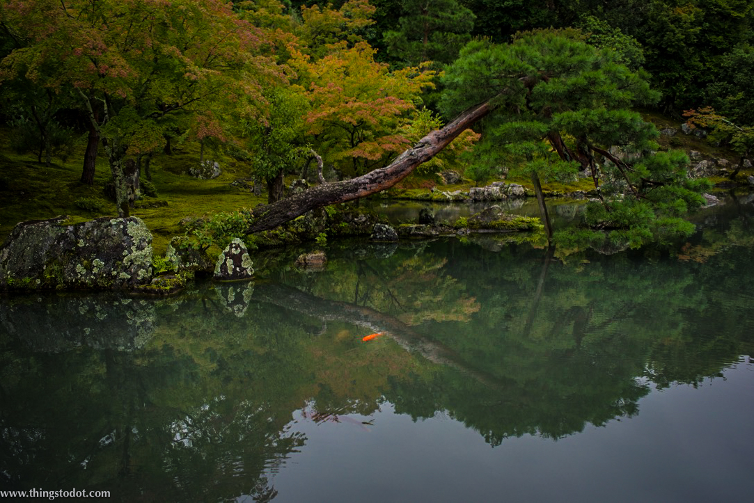 Tenryu-ji, Kyoto, Japan. UNESCO World Heritage Site. Image©www.thingstodot.com
