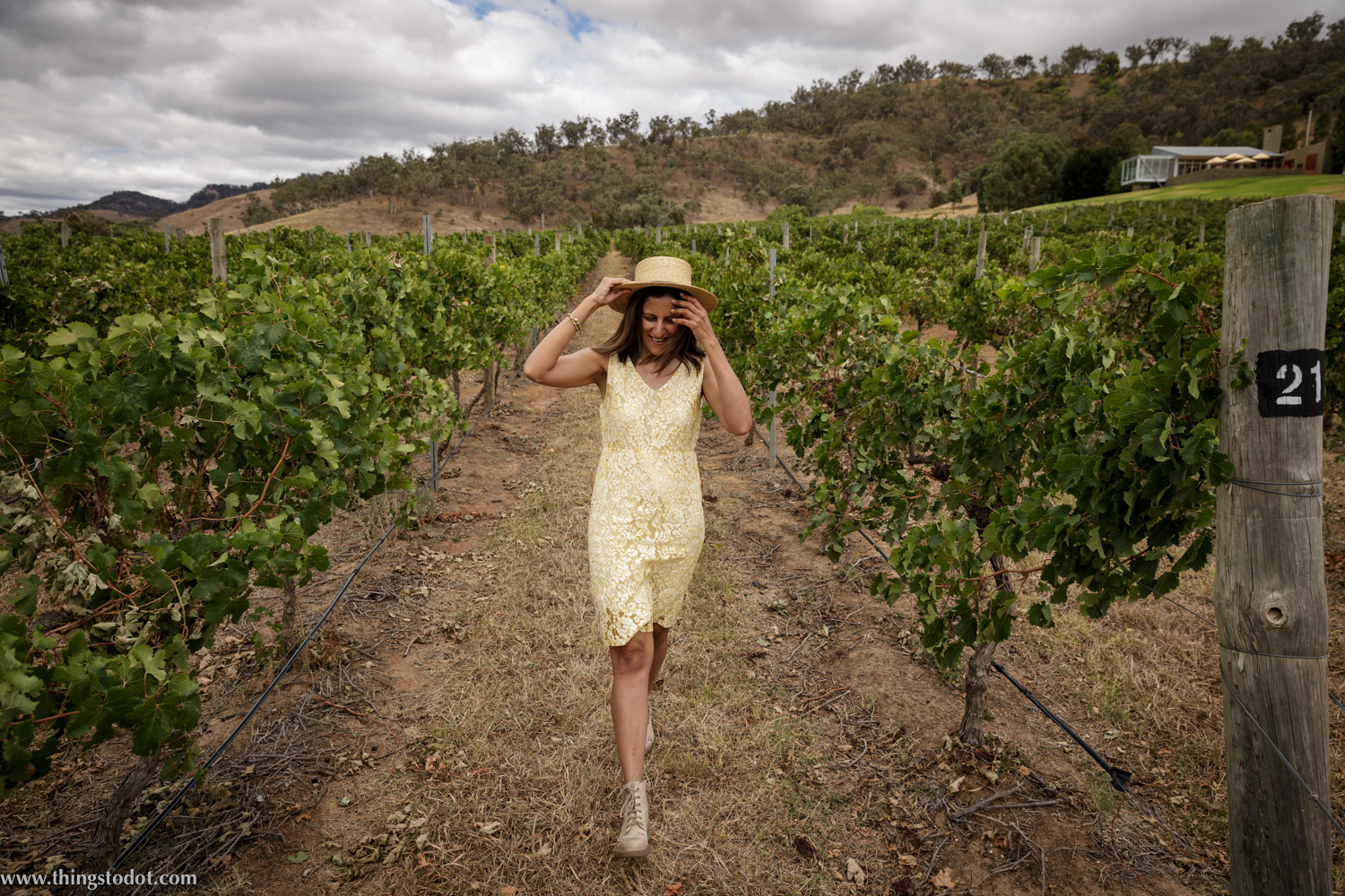 Logan Wines, Mudgee vineyards, Mudgee NSW, Australia. Photo:Noel Dawson, Image©www.thingstodot.com.