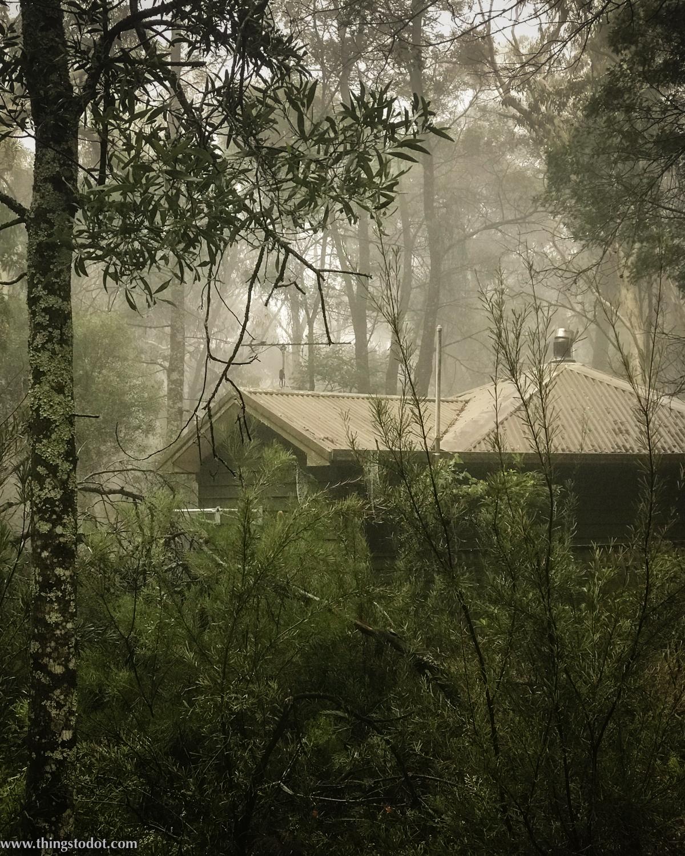Twin Falls Bush Cottages, Fitzroy Falls, Southern Highlands, NSW, Australia. Photo:Gunjan Virk. Image©www.thingstodot.com.