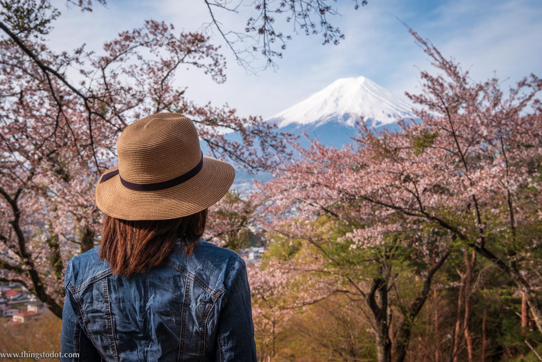 Sakura, cherry blossoms, Japan,Fujimi Kotoku Koen. Photo: Yuga Kurita. Image©www.thingstodot.com.