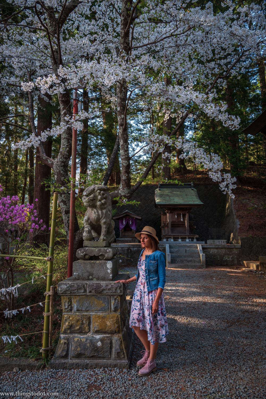 Kawaguchiko Asama Shrine, Fuji, Japan. Photo: Yuga Kurita. Image©www.thingstodot.com.