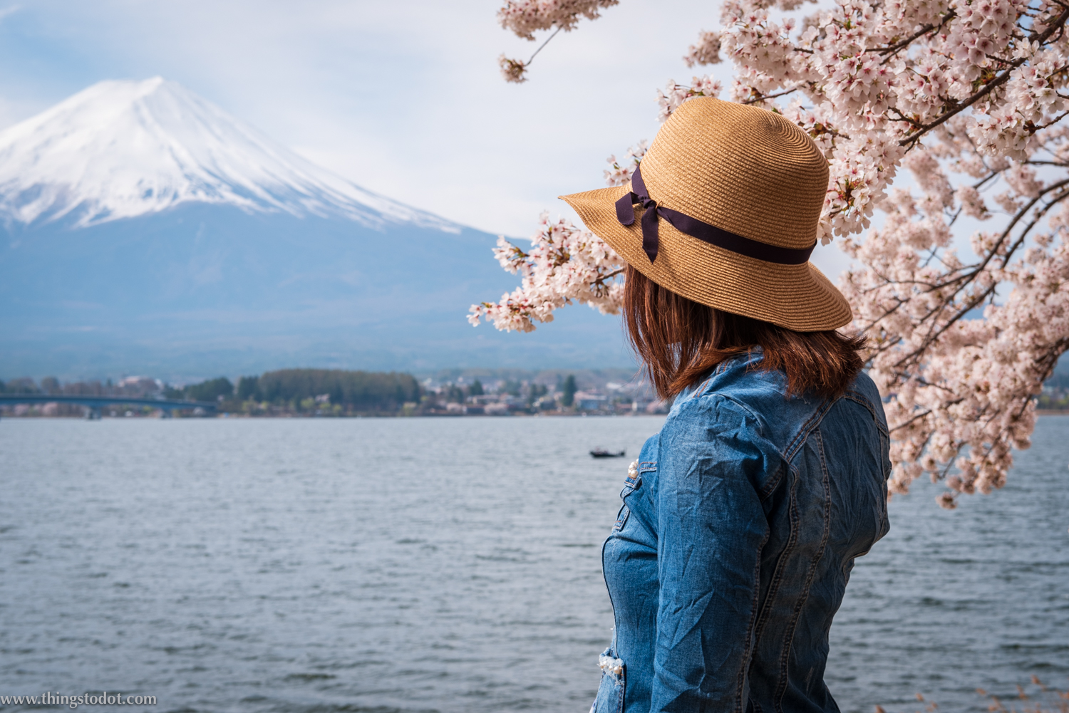 Mt. Fuji, Lake Kawaguchiko, Fuji, Japan. Image©www.thingstodot.com.