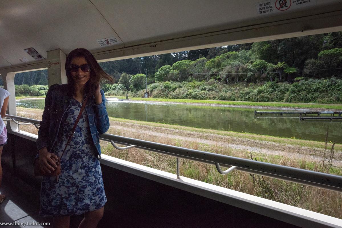 TranzAlpine, Great Journeys of New Zealand, South Island, New Zealand. Photo: Gunjan Virk. Image©www.thingstodot.com.