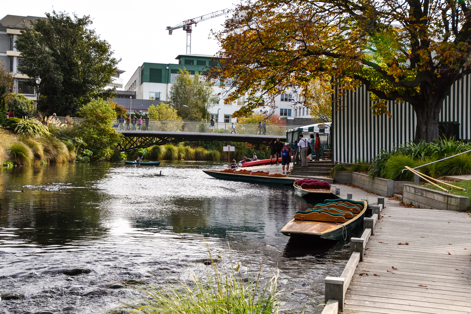 Punting on the Avon River, Christchurch, New Zealand. Photo: bebeball, Adobe Stock.