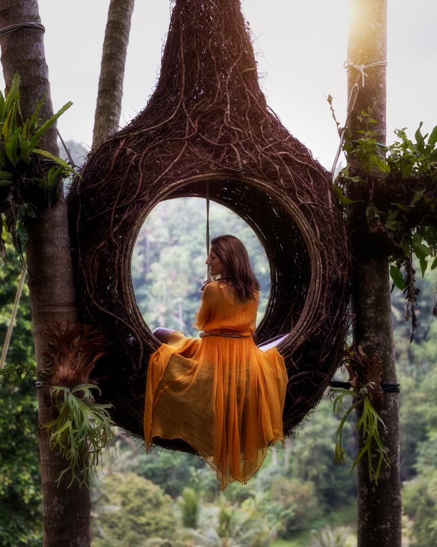 Bird's nest, Bali, Indonesia. Photo: Adi Sumerta.
