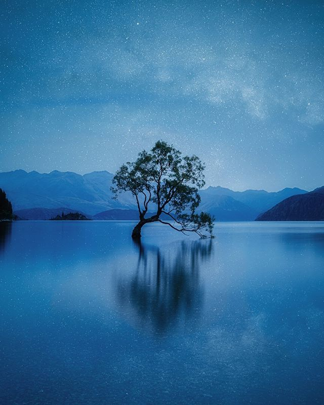 My version of the iconic #wanakatree . When I asked a photographer friend based in New Zealand, if he could take me to 'the Wanaka tree' and help me shoot it, he literally covered his face with his hands! He told me to look for something unique to shoot in NZ, and not shoot something that had already been shot hundreds (if not thousands) of times!! Then he added that if I ever got there, I should either swim in the water or climb the tree, so that it wouldn't just be another photo of the tree! I didn't know whether climbing the tree or swimming in the water was allowed but one thing I knew was that I wanted to get there! Imagine as a travel blogger how empty my trip would feel, without getting a photo of one of the most famous Instagram spots in the world!Thank you @robbrownphotonz for bringing me here and for your invaluable photography lessons to shoot this tree! While editing this photo, I just noticed that there are two birds sitting in the tree - and they are indeed quite sharp. It's a wonder they were sitting so still because this is a long exposure shot!  Can you spot the two birds 🐦?! It's actually the cutest thing I came across today! 🥰 #thingstodot #nevergiveup @newzealandphotographyworkshops