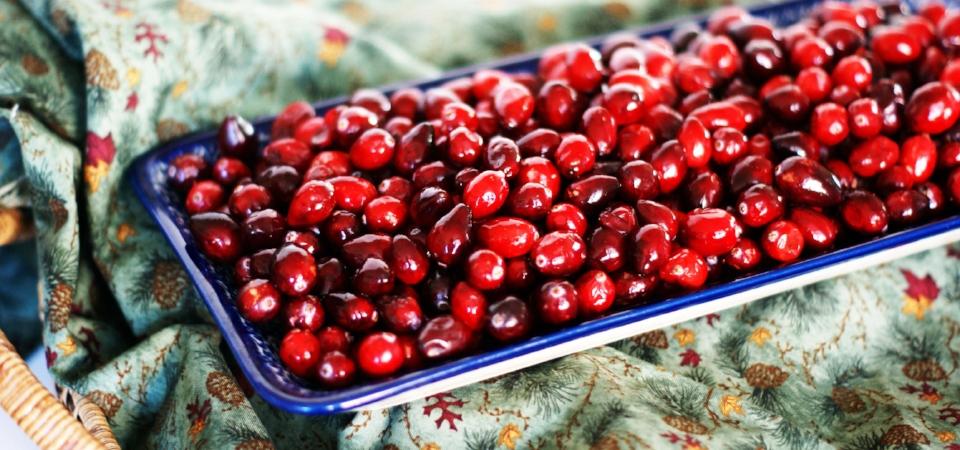 cranberries 3.jpg