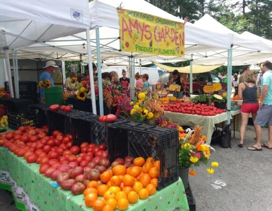 market stand.jpg