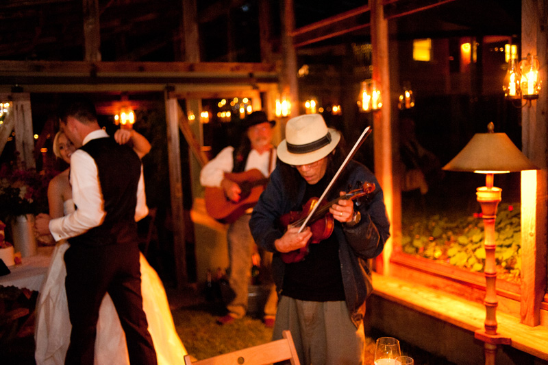 Bluegrass band performs for wedding guests