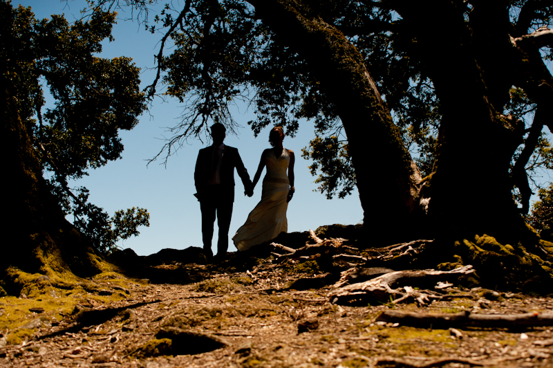 Silhouette of bride and groom holding hands on Mt. Tamalpais