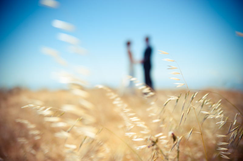 Grass blowing in the wind with soft focus bride and groom on Mt. Tamalpais