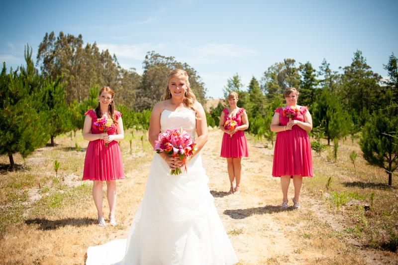 Bride and bridesmaids portrait in field
