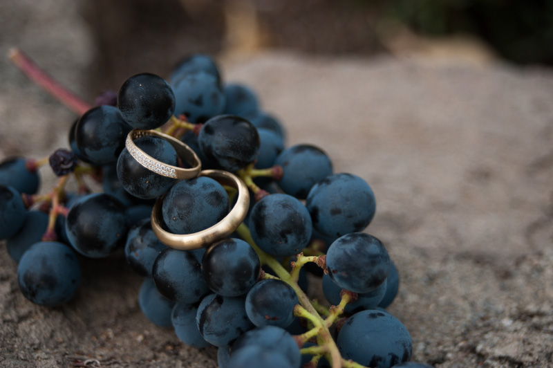 Gold wedding rings on wine grapes in St. Helena, CA
