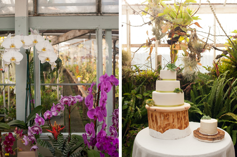 Wedding cake and orchids