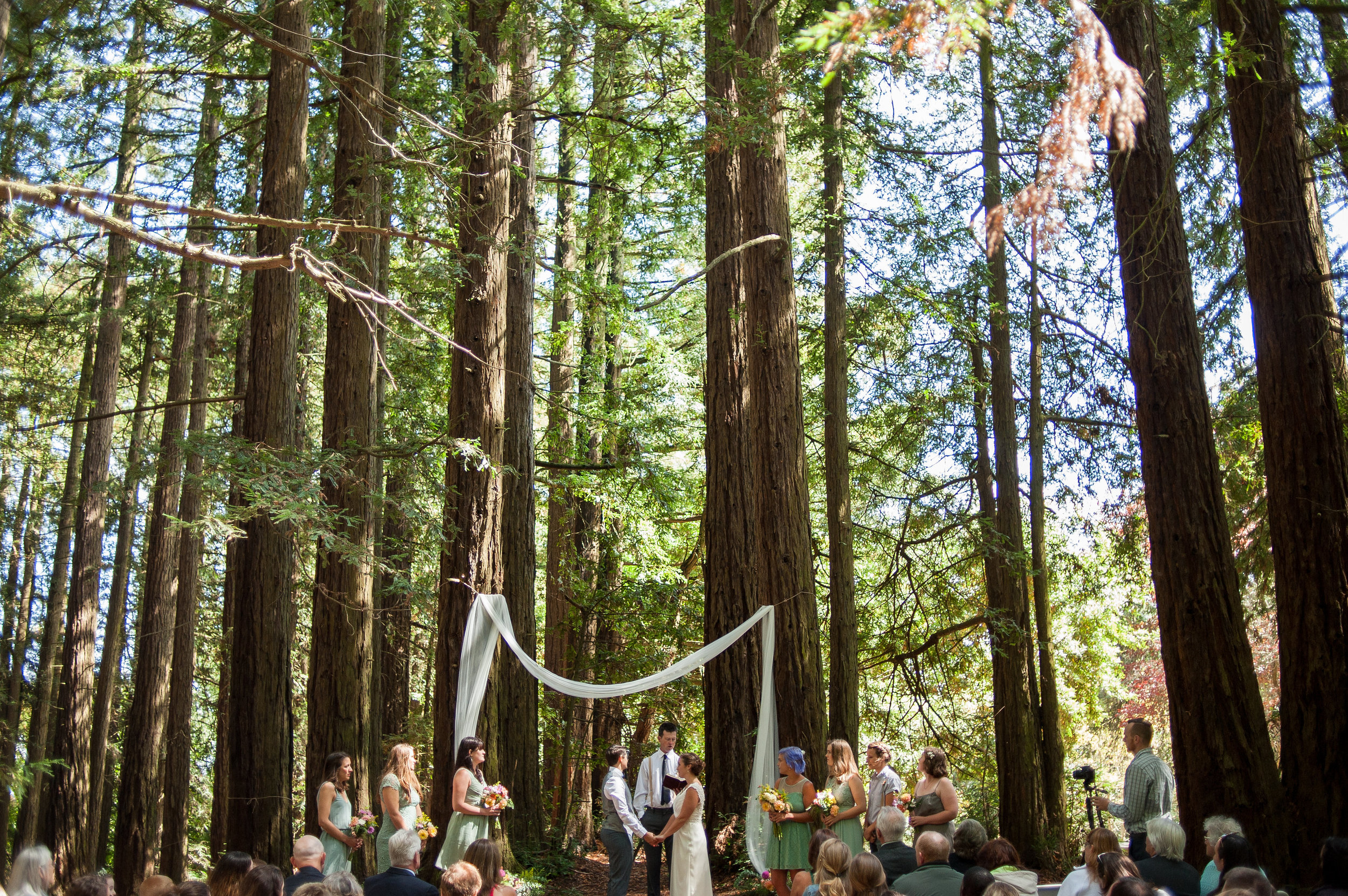 roberts-redwood-wedding-oakland.jpg