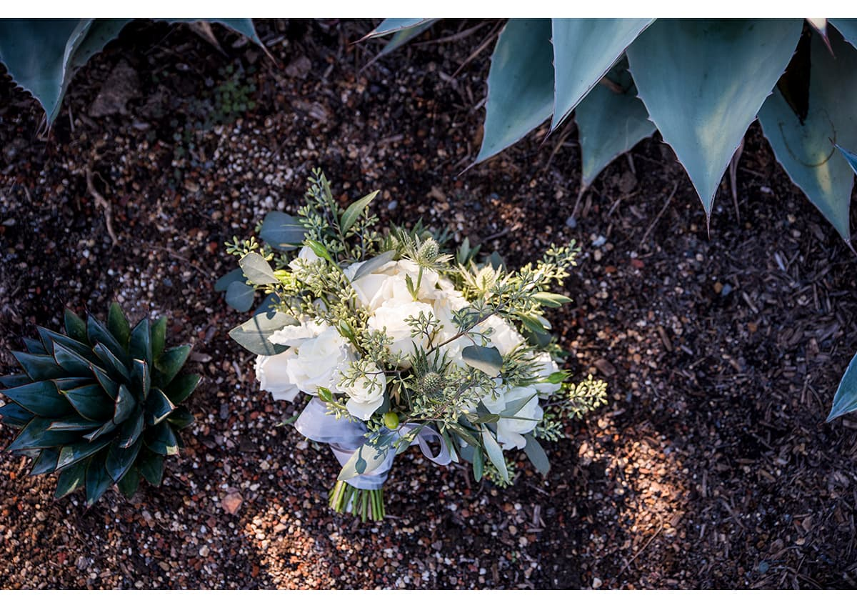 Bouquet of white roses lying next to succulents