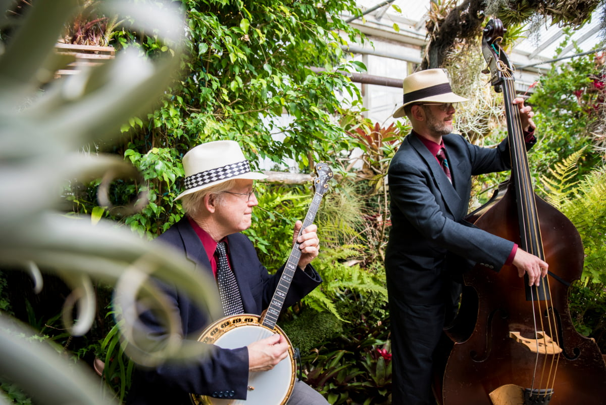 Campbell's Jazz Soup performing at wedding