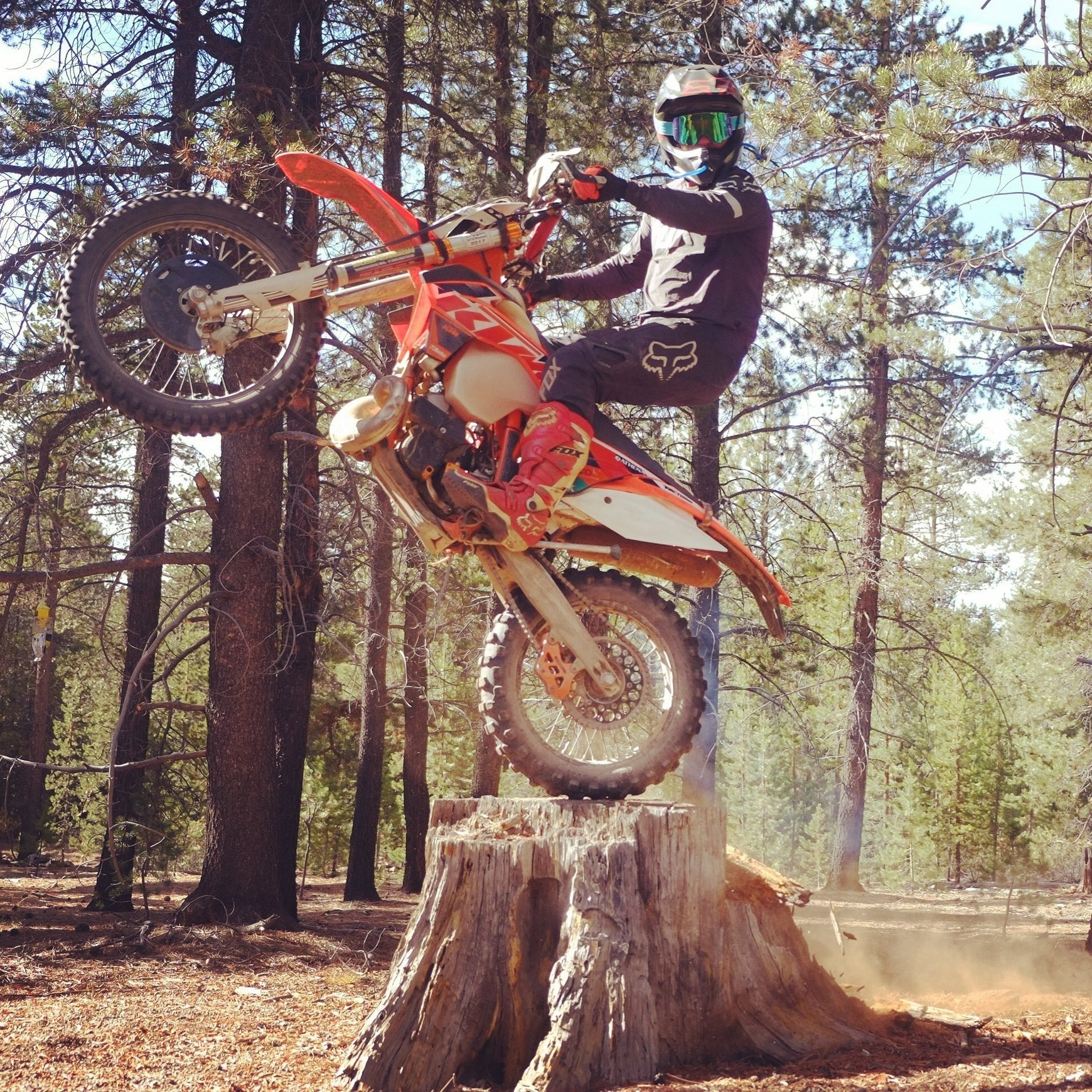 travis gardner member  Hailing from SoCal, but having happily transformed into a native Northwesterner long ago, Travis is not afraid to hang a leg out. Having earned the Pacific Northwest Vintage Motocross championship for 250 machines, he is skilled at finding the elusive traction tolerances of most any surface. Whether on a motorcycle or not, he specializes in powerbanding.