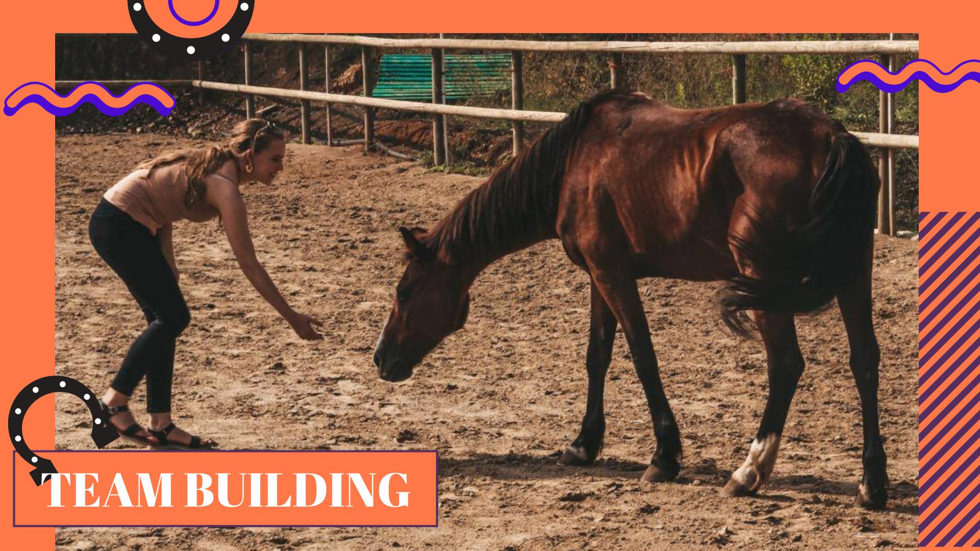 Team Building con cavallos eventos experience