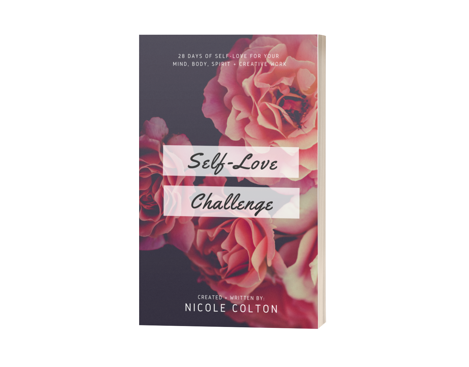 Self-Love Challenge Book (Paperback)   [International Order - Includes $5 S&H]