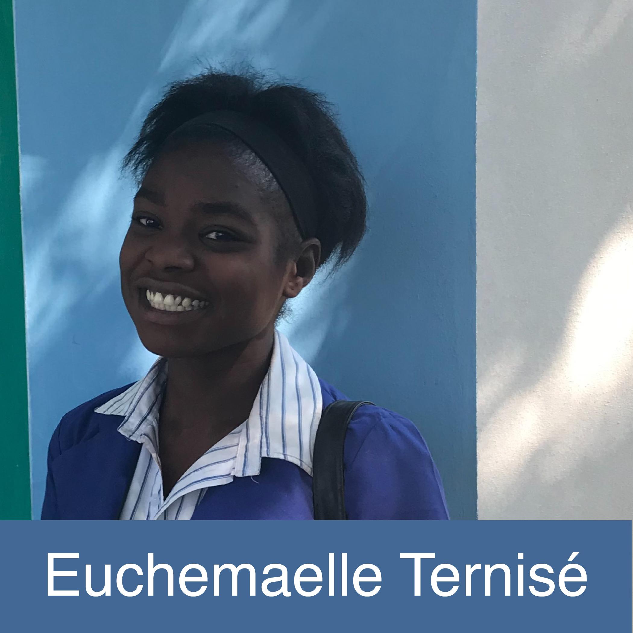 Euchemaelle-01.jpg