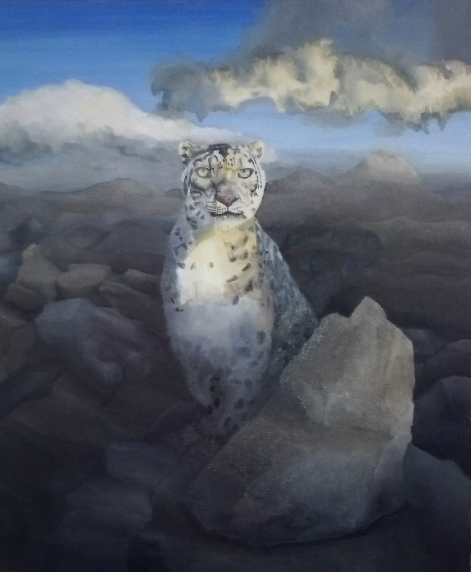 """""""Snow Leopard"""", oil, 2015, 24"""" x 28"""" (leopard image based on the original photograph by Gerry Ellis). Donation for Fall Auction 2017 of the Snow Leopard Trust (snowleopard.org). SOLD.   My favorite large cat, endangered with somewhere around 3000 left in the wild. I am fond of it in particular due to the fact of attacks of these cats on humans is extremely rare if non-existent."""