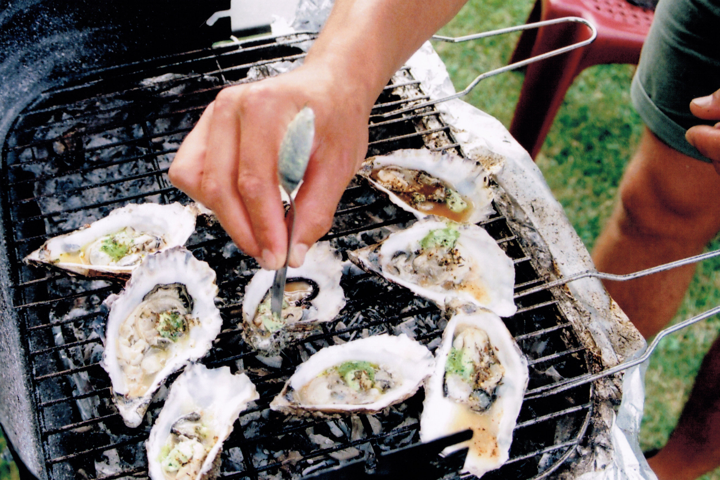 france - oysters 2.jpg