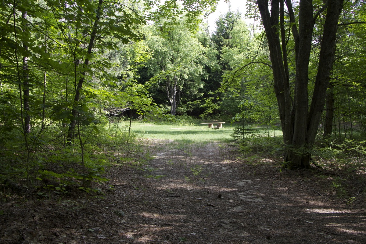 CampKellogg - 03.jpg